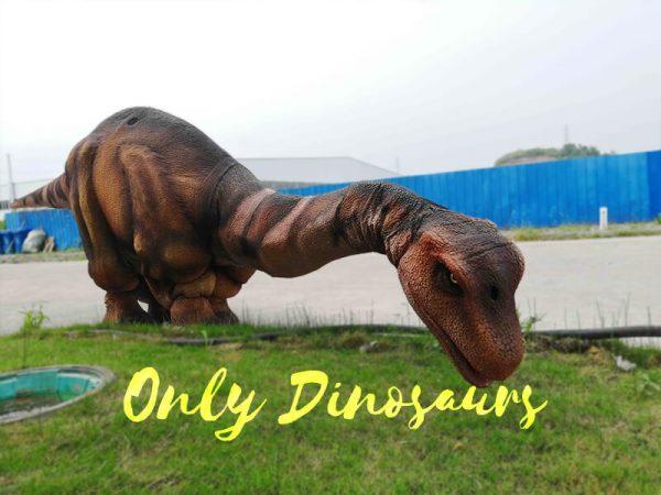 Four Legs Realistic Big Brontosaurus Dino Costume3