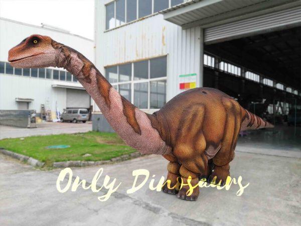 Four Legs Realistic Big Brontosaurus Dino Costume5