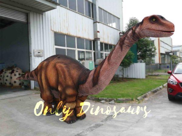 Four Legs Realistic Big Brontosaurus Dino Costume6