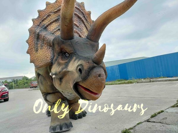 Cool Two-person Triceratops Costume