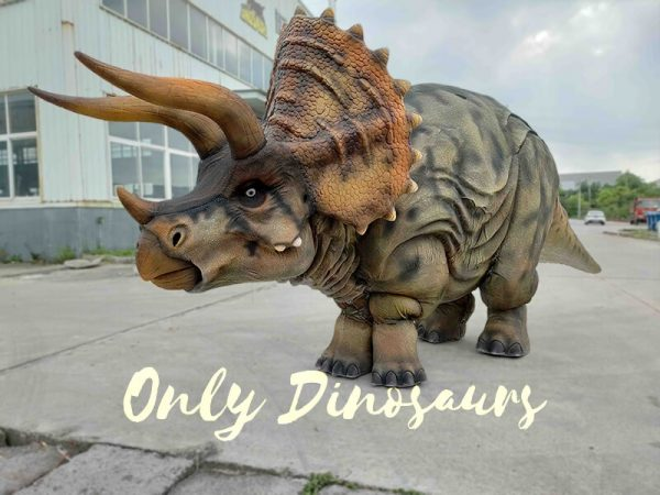 Huge Triceratops Dinosaur Costume
