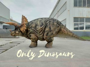 Four Legs Realistic Triceratops Costume for Show