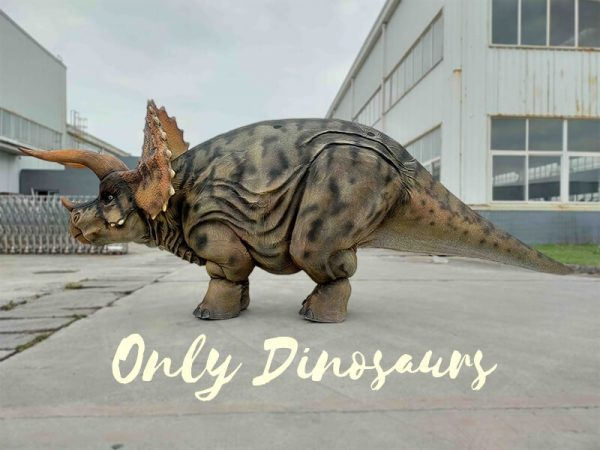 The Side of Triceratops Costume