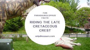Fun Parasaurolophus Facts Riding The Late Cretaceous Crest
