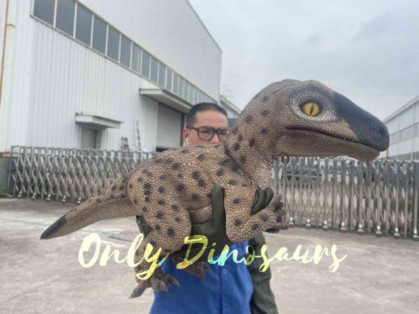 Speckled Raptor Dino Puppet False Arm1