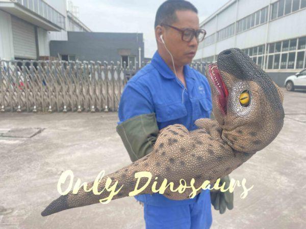Speckled Raptor Dino Puppet False Arm4