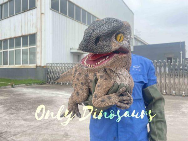 Speckled Raptor Dino Puppet False Arm6
