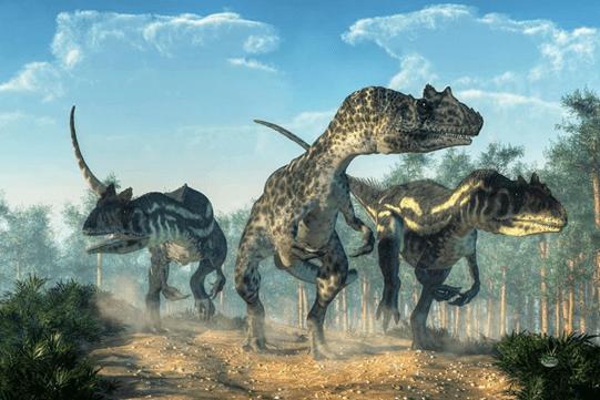 Three walking allosaurus