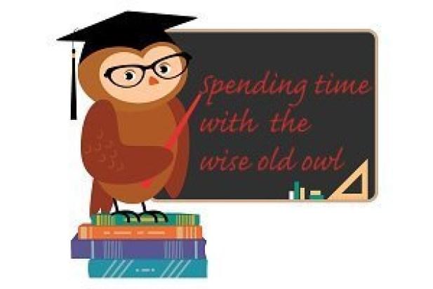 wise old owl iii