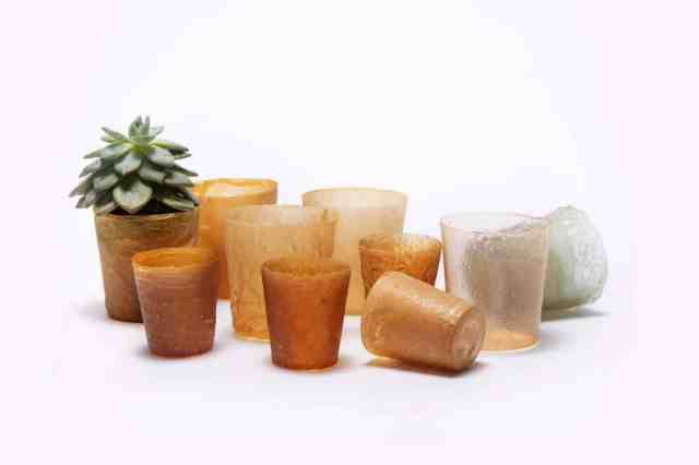Bioplastic from discarded lobster shells