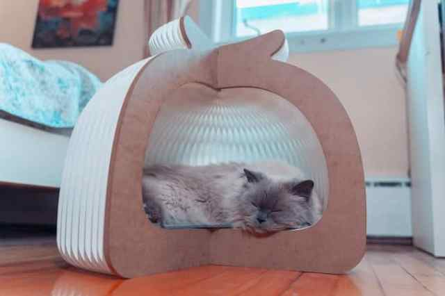 Origami-style cat bed