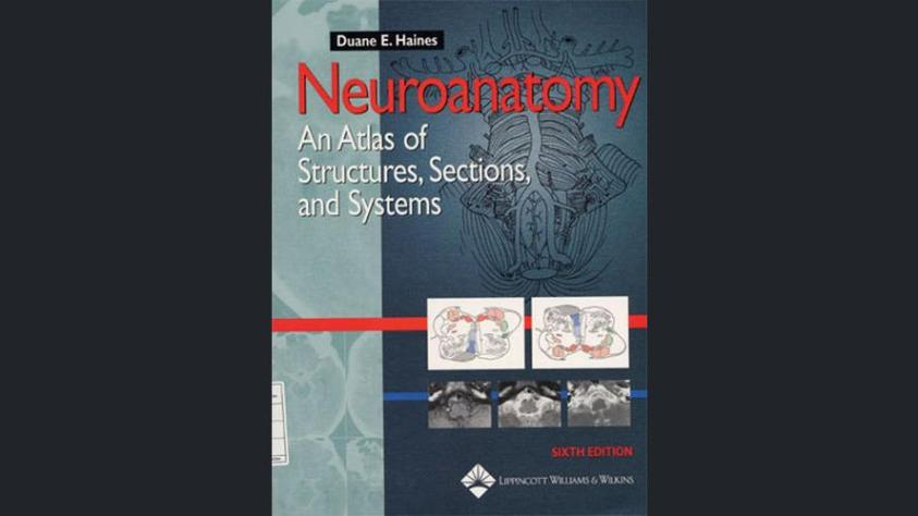 Neuroanatomy An Atlas of Structures, Sections, and Systems – Duane E. Haines