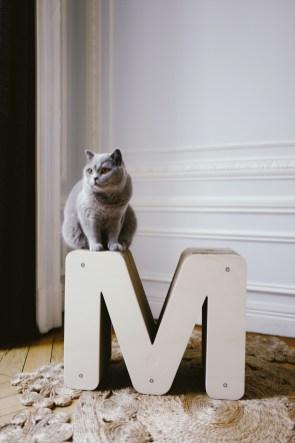 Magnum et son griffoir design