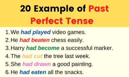 Example of Past Perfect Tense