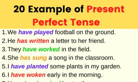 present-perfect-tense.