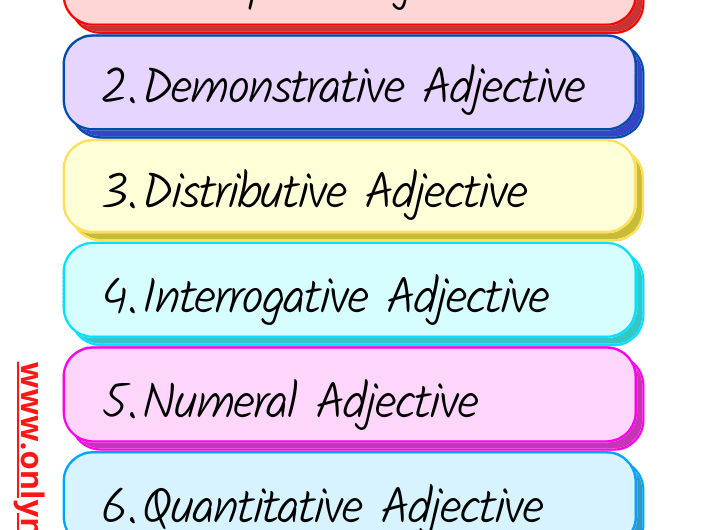 Types of Adjective: Definition & Examples