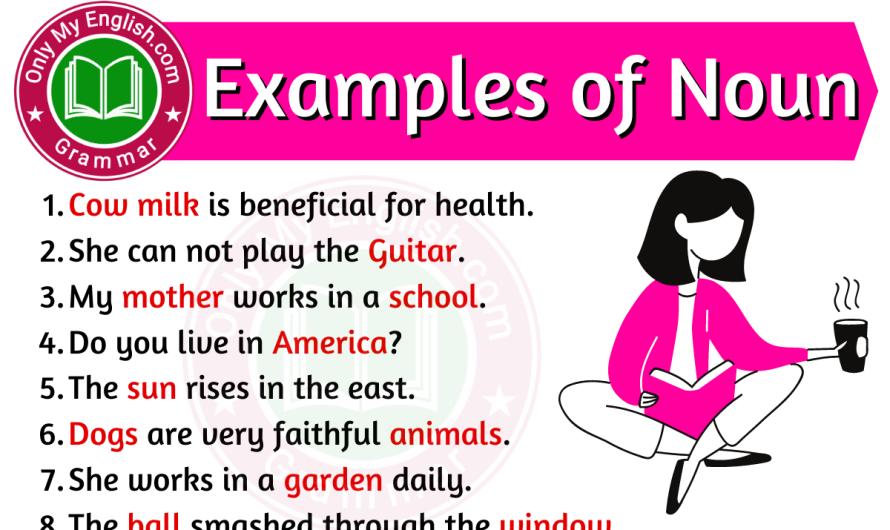 Examples of Noun in Sentences