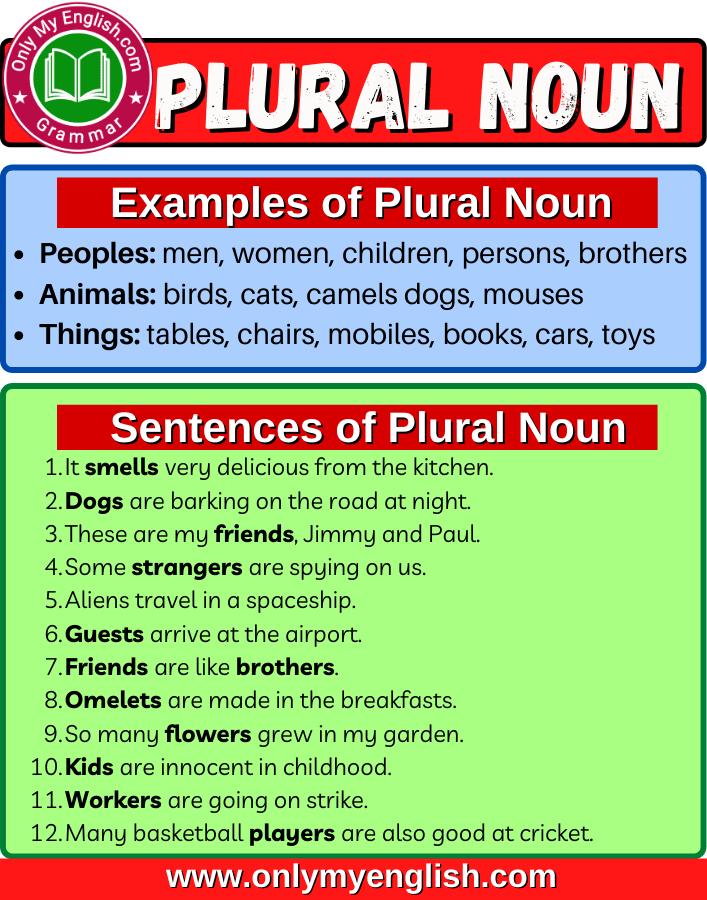 plural noun definition examples list