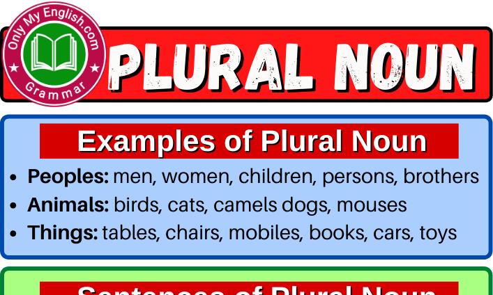 Plural Noun: Definition, Examples, & List