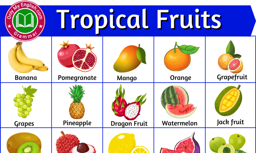 Tropical Fruits Names