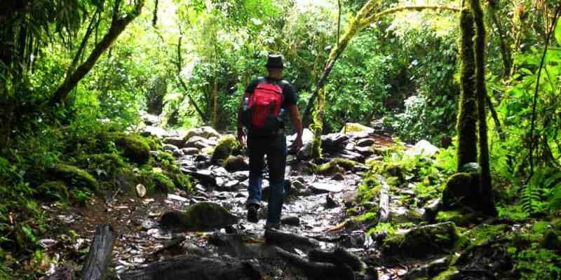 Backpacking Colombia - Uncover the Wild Land of Salsa and Latin Culture
