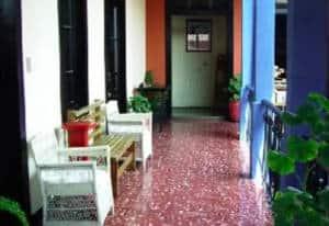 Black Cat Hostel Xela Guatemala