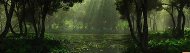 Swamp Grove