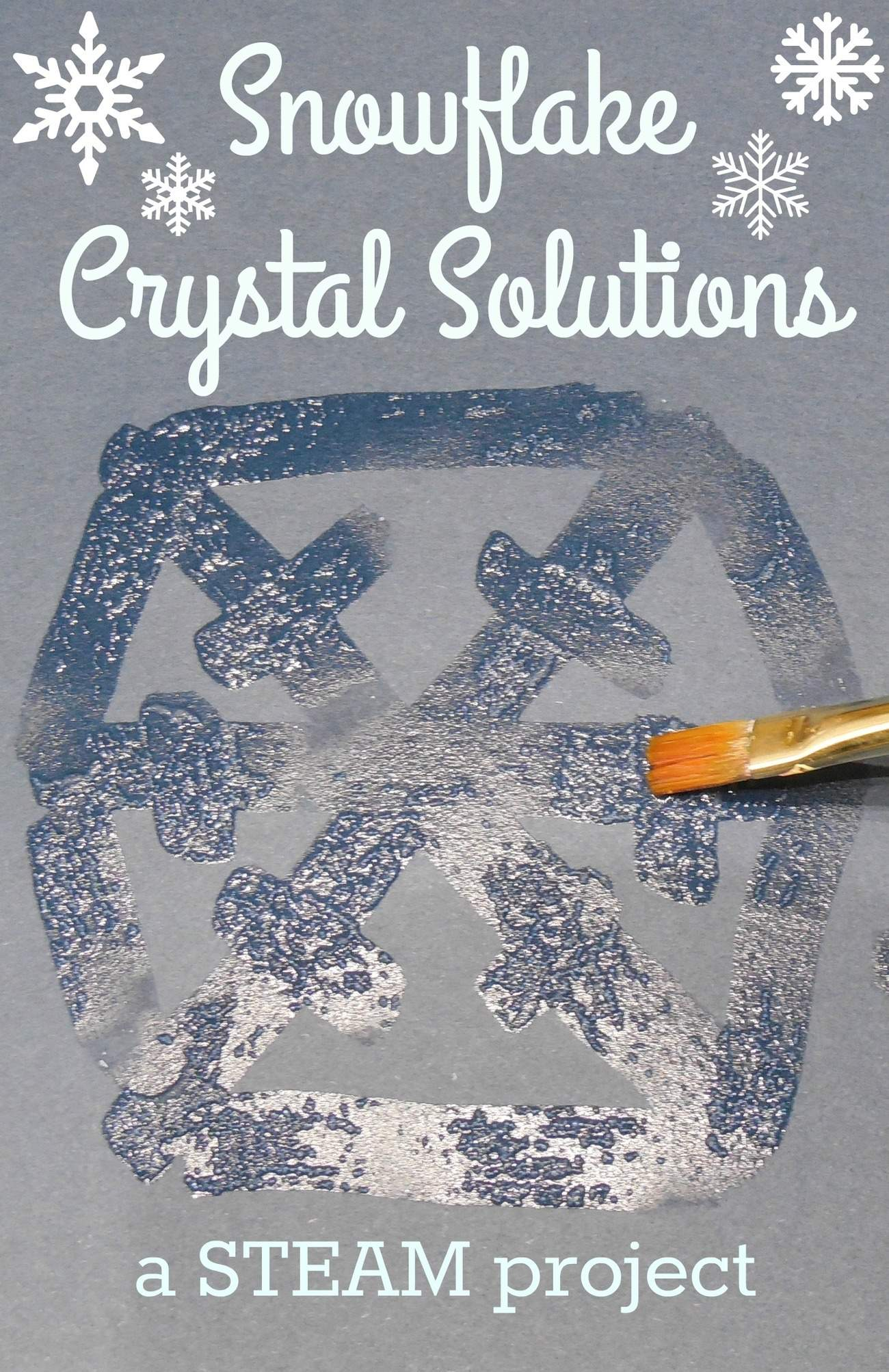 Snowflake Crystal Solutions A Steam Project