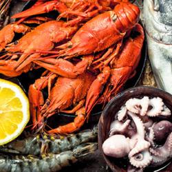 OnlyRé plateau de fruits de mer