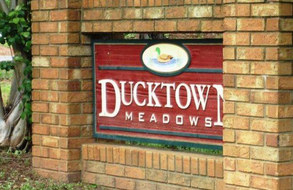 Ducktown Meadows Subdivision Cumming Georgia