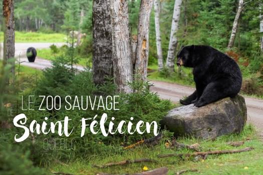 Zoo sauvage saint felicien