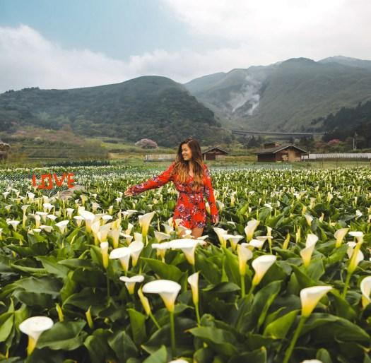Yangmingshan Taipei aromes Taïwan