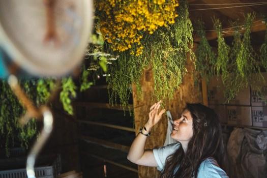 jardin des clos callas