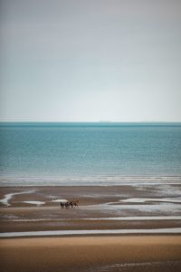 plage cabourg
