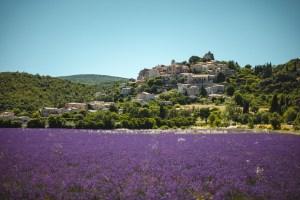 Simiane-la-Rotonde Alpes de Haute Provence lavandes