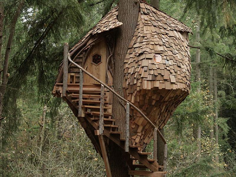 OnMilwaukeecom Movies  TV Animal Planets Treehouse