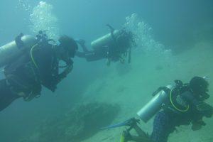 scuba diving komodo islands itinerary