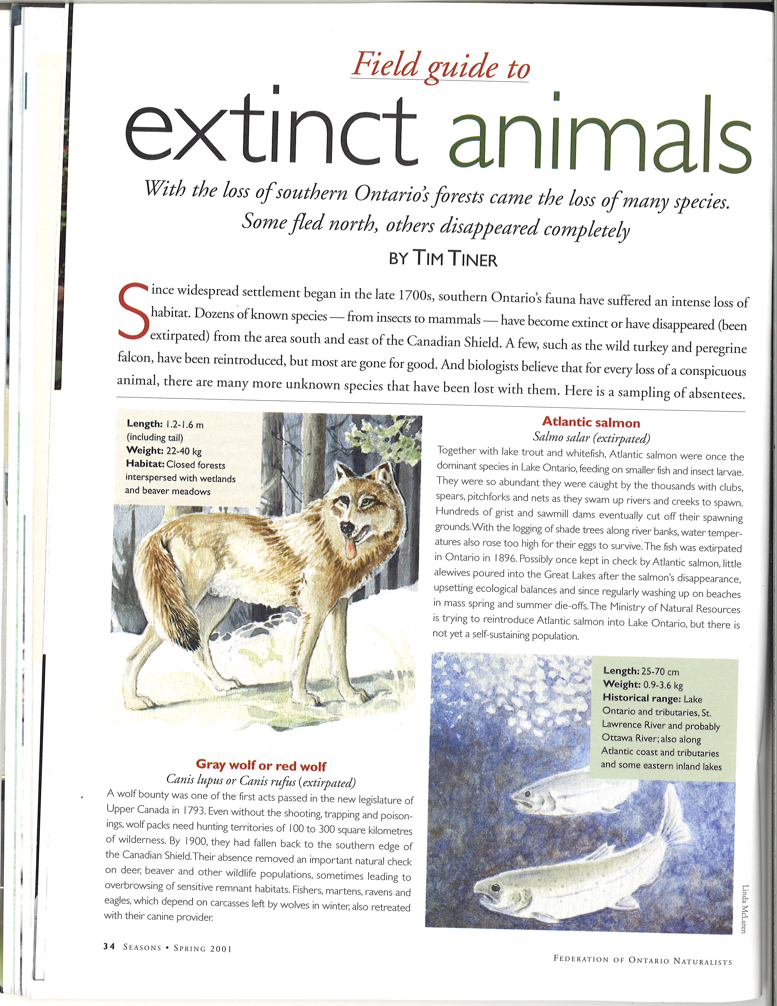 Field Guide To Extinct Animals