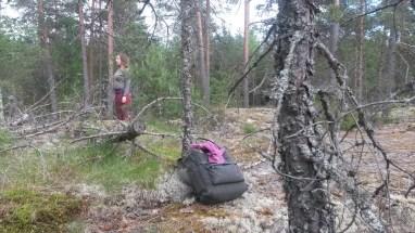 Metsäjooga1