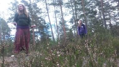 Metsämieli4