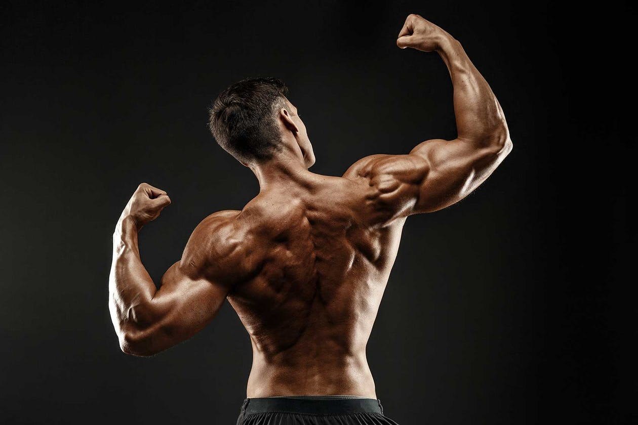 5 Killer Back And Biceps Workouts For Building Muscle