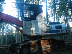 This is logging country