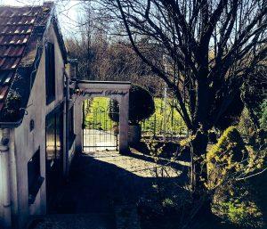Wijngaard Dordrecht