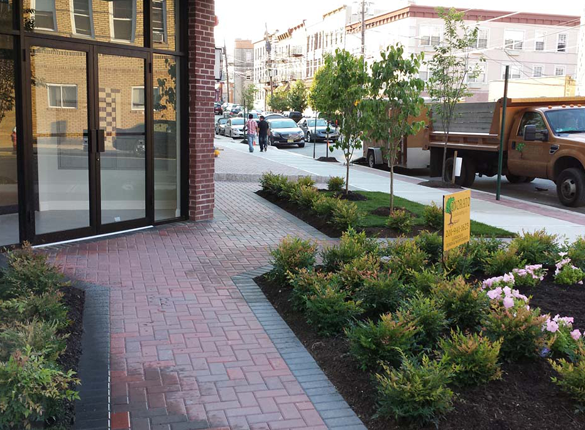 commercial landscaping and hardscaping