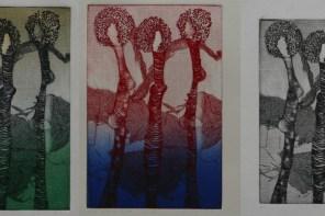 Badria El Hassani : un regard, de multiples talents