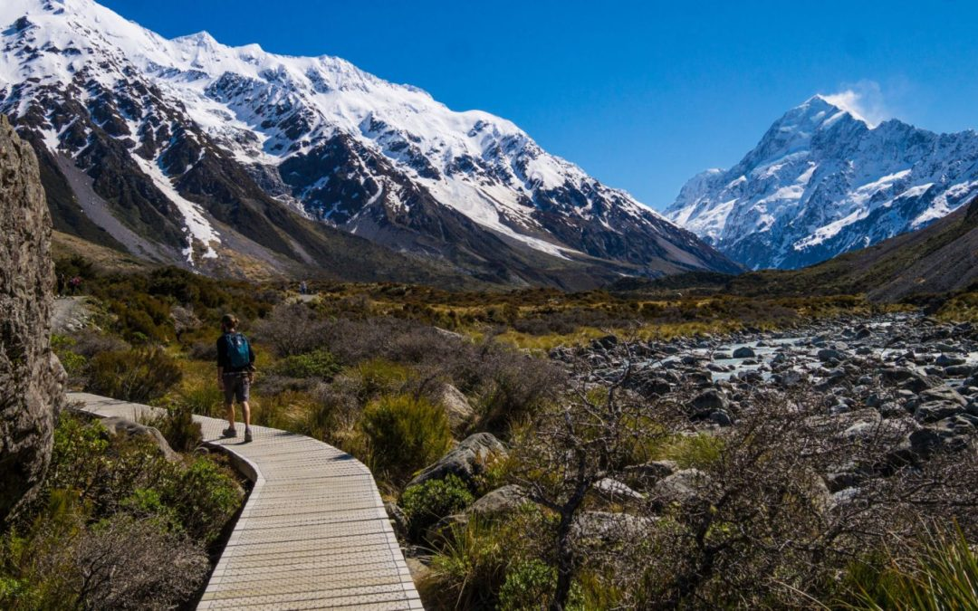 Road-trip en Nouvelle Zélande : Bilan & Budget
