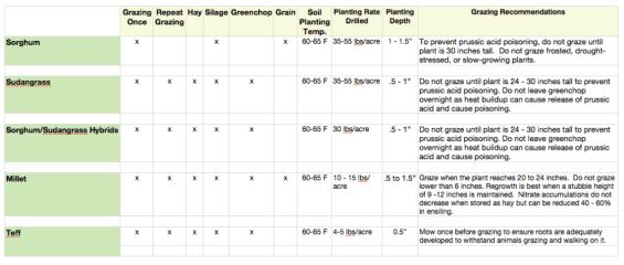 Comparing Summer Annuals for Pasture