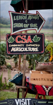Photo from Shepherd Farms CSA
