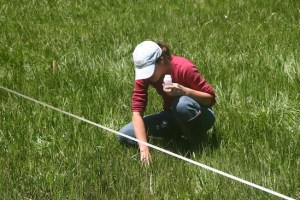 Postdoctoral scholar Leslie Roche takes a water sample from a meadow on a US Forest Service grazing allotment for her study on cattle grazing and water quality