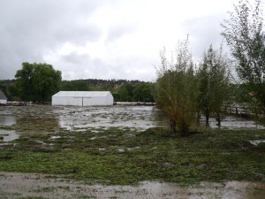 A flooded pasture near Loveland, Colorado